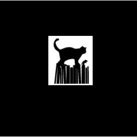Kitaplar Üzerinde Yürüyen Kedi ve Fare